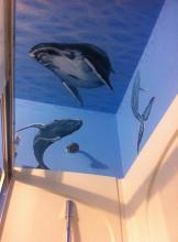 Whales in the bath tub!